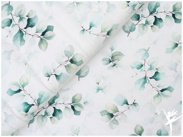 Eukalyptus,Jersey Weiß/Grün