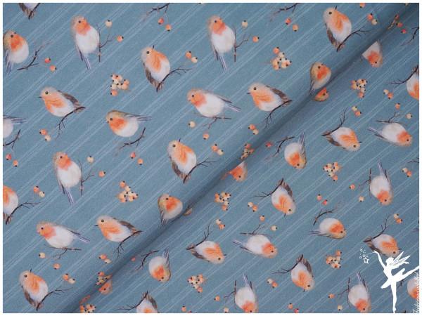 Herbst/Winter Kollektion 21/22 Rotkehlchen Digital Jersey Rauchblau